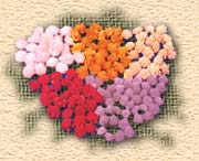 Madhu Flowers India is a Manufacturer, Exporter and Supplier of  Dry Flowers from India or Dried Flowers from India, Kolkata