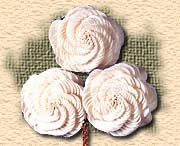 Madhu Flowers, India is an  Indian Manufacturer, Exporter and Supplier of Dry Flowers Items or Dried Flowers Items